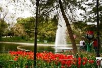 Yıldız Parkı